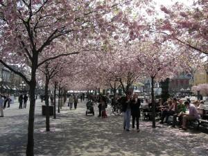 Postal: El Jardín del Rey (Estocolmo, Suecia)