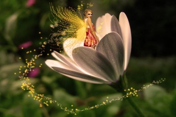 Hada de las flores