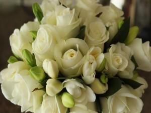 Postal: Ramo de fresias y rosas blancas