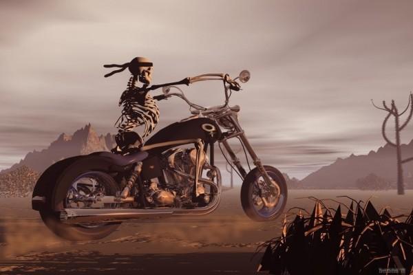 Esqueleto motorista