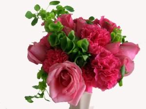 Claveles y rosas de color rosado con hojas verdes