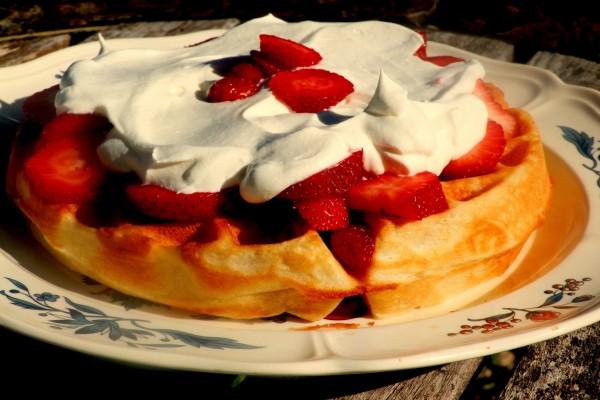 Gofre redondo con nata y fresas