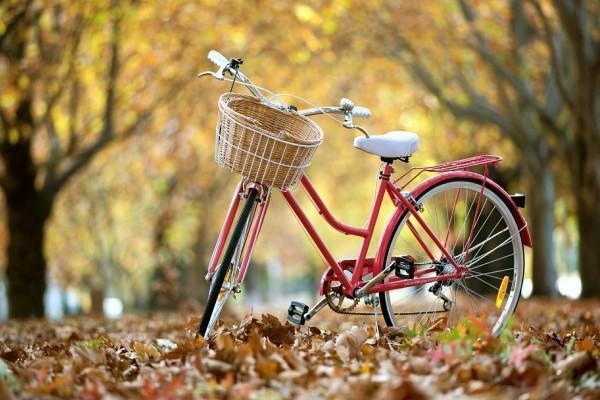 Bicicleta sobre las hojas caídas de otoño