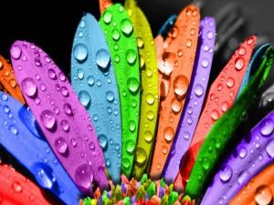 Postal: Pétalos de colores