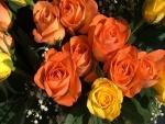 Rosas naranjas y amarillas
