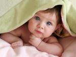 Dulce bebé