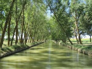 Vista del Canal de Castilla, junto a Medina de Rioseco (Valladolid, España)