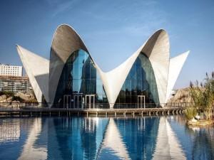 Postal: Oceanográfico en la Ciudad de las Artes y las Ciencias de Valencia (España)