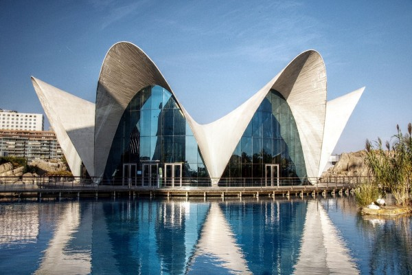 Oceanográfico en la Ciudad de las Artes y las Ciencias de Valencia (España)
