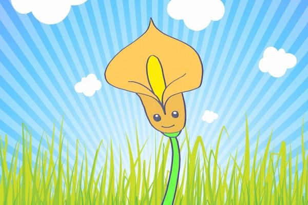 Flor de Cala 3D
