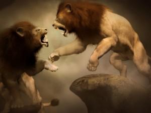 Batalla por el reino