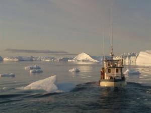 Navegando entre los icebergs, en el fiordo helado de Ilulissat, Groenlandia
