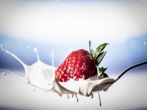 Fresa en leche