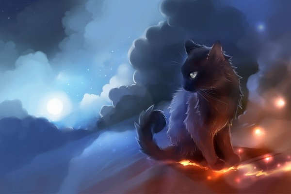 Un gato en el cielo