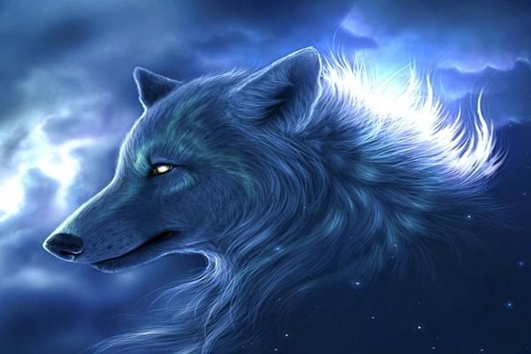 Lobo en el cielo