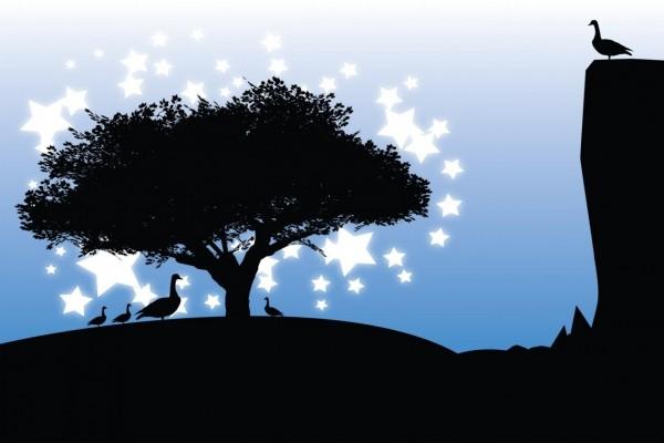 Patos y estrellas
