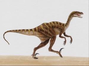 Postal: Dibujo de un dinosaurio