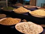 Platos con diferentes tipos de semillas