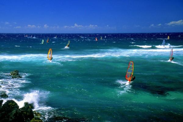 Mar lleno de windsurfistas