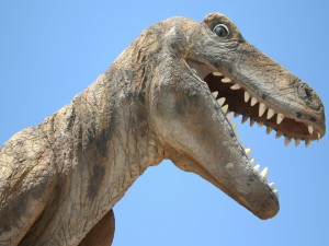 Postal: Cabeza de un dinosaurio