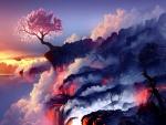 Cerezo solitario en un mar de lava