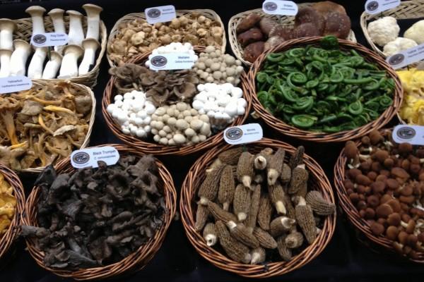 Cestas con varios tipos de setas comestibles
