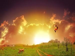 Postal: Vacas pastando y en el cielo globos aerostáticos
