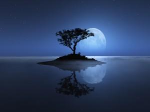 Isla con un árbol, en compañía de la luna