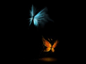 Mariposas de luz y fuego