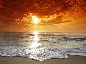 Postal: Reflejo del sol en la orilla del mar