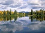 Reflejo de la naturaleza