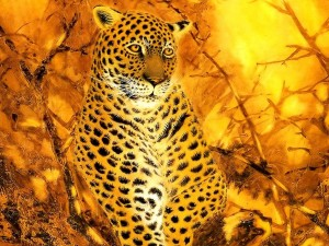 Leopardo en tonos de color fuego