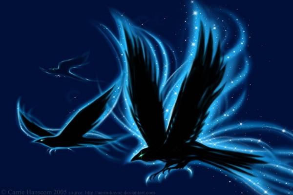 Cuervos mágicos