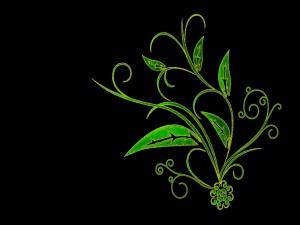 Postal: Planta verde en fondo negro