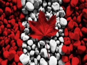 Postal: La bandera de Canadá con piedras y una hoja