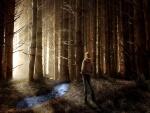 Extraño bosque