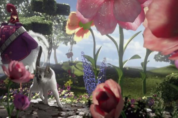 Gato en un jardín