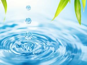 Postal: Tres gotas de agua