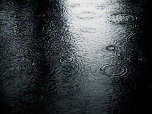 Ondas de agua formadas por la lluvia