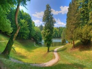 Camino hacia el lago