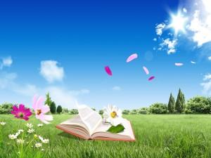 Libro abierto sobre la hierba
