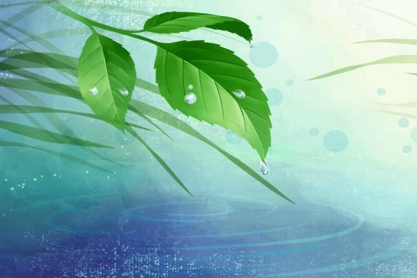 Hojas verdes 3D