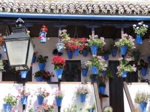 Postal: Patio típico cordobés (España)