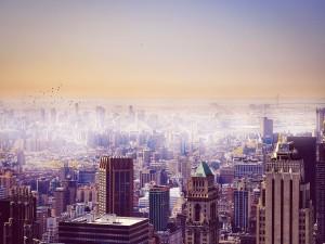 Pájaros en el cielo de una gran ciudad