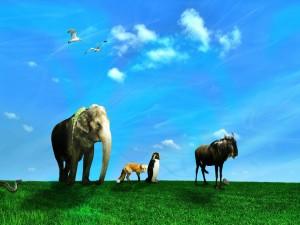 Animales bajo un cielo azul