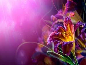 Flor bajo una luz violeta