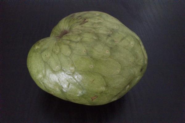 Chirimoya