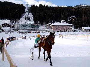 Postal: Carrera de caballos en Arosa (Suiza)
