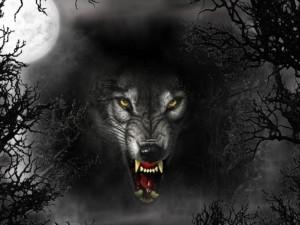 Lobo asesino