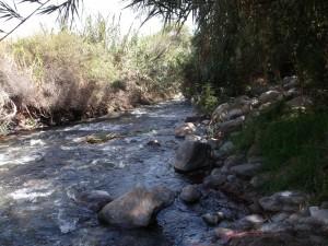 La corriente de un río